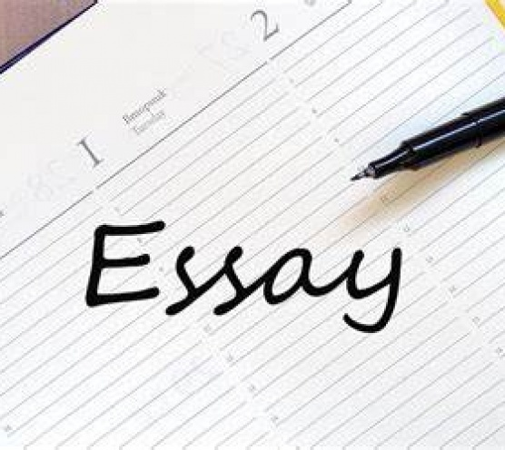 My Tips For Essay Writing - Mccomb Students